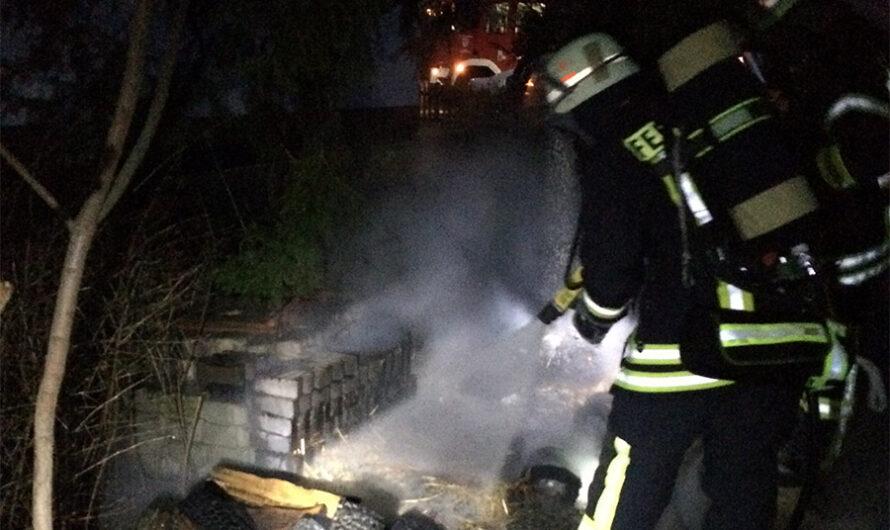 01.03.2016 Brennen mehrere Mülltonnen
