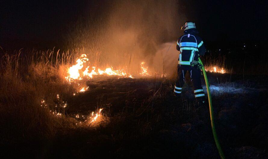 07.03.2021 Flächenbrand